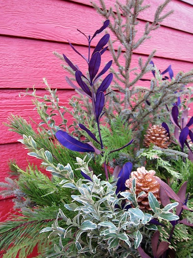winter_floral_arrangement_ 1