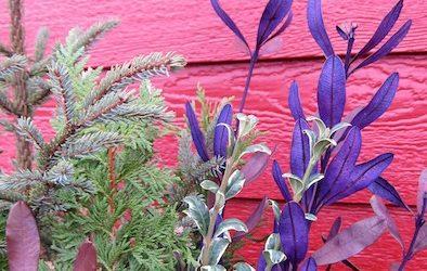 Winter floral arrangement