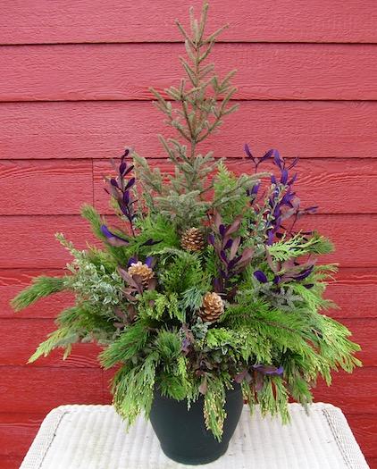 "<a href=""/2015/12/04/winter-floral-arrangement/"">Winter Floral Arrangement</a>"