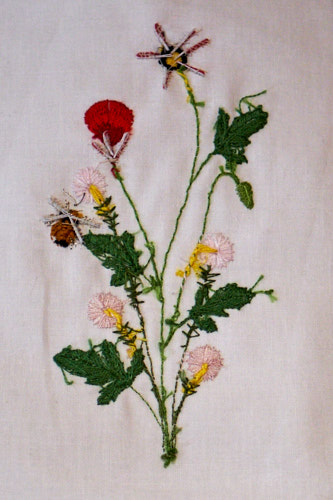 Poppies and Santa Barbara Daisies (Celeste Chalasani) stumpwork embroidery