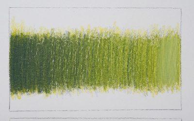 Colored Pencil Techniques 1