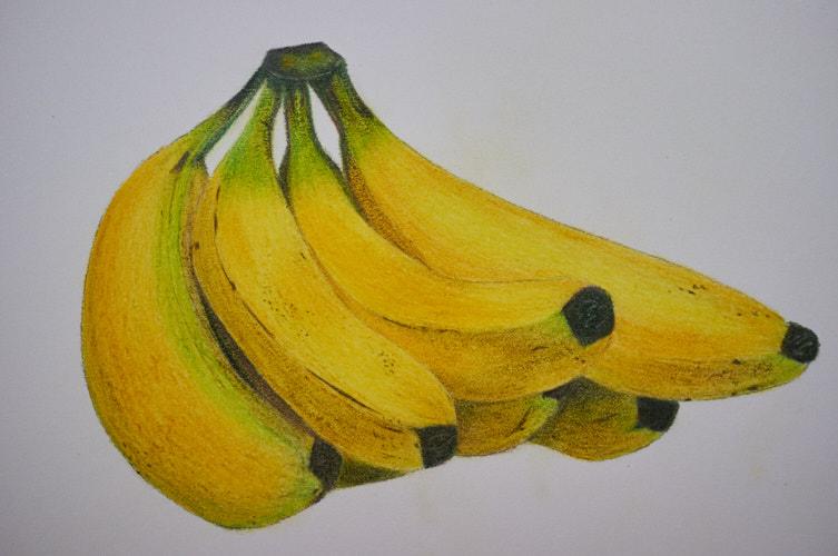 """<a href=""""/2018/03/11/colored-pencil-techniques-4/"""">Colored Pencil Techniques 4</a>"""