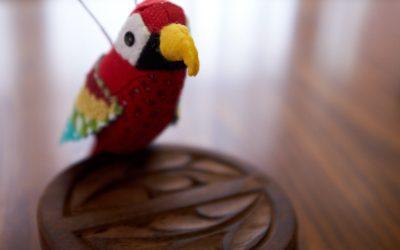 Pretty Birds Parrot