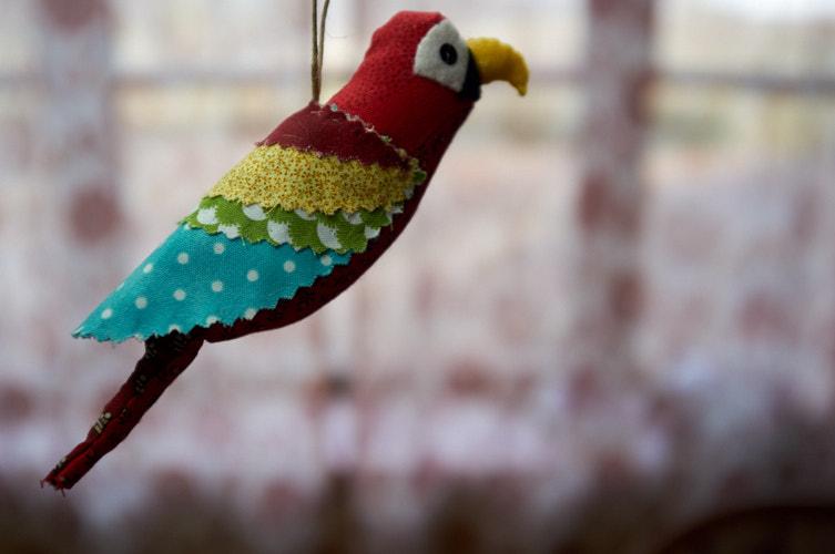 "<a href=""/2019/12/23/pretty-birds-parrot/"">Pretty Birds: Parrot</a>"