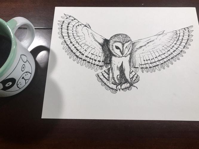 """<a href=""""/2020/05/11/sketch-barn-owl/"""">Sketch: Barn Owl</a>"""